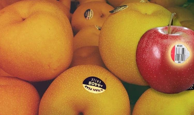 Have you ever wondered why stickers are available on the fruits found in the market.
