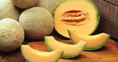 Know the benefits of eating melon in summer