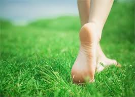 Know the unique benefits of walking on grass in the morning.