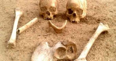 Skeletons coming out during excavation in Rajasthan, laborers who run away, know what happened then