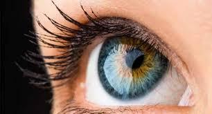 नेत्रदान के लिए डॉक्टर क्या पूरी आंख काटकर लगा देते हैं?