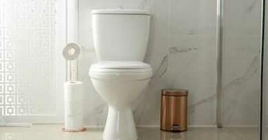 टॉयलेट पाइप से भी फैल सकता है कोरोना वायरस? जानें रिसर्च