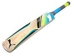 क्रिकेट में बैट किस लकड़ी का बना होता है? जानिए
