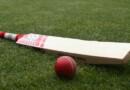 """जानिए एक क्रिकेट के बल्ले की गुणवत्ता के लिए """"ग्रेन्स"""" को प्राथमिकता दी जाती है, आखिर में ये ग्रेन्स"""" क्या है?"""
